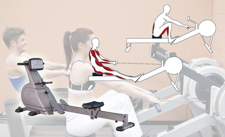 Rameur pour fitness et msuculation